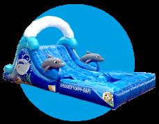 Escaladora Delfines
